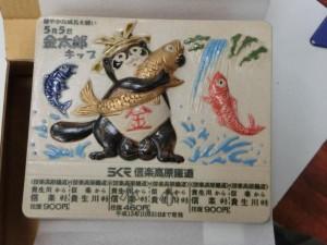 金太郎キップ1